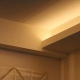 個性が光る折り上げ天井の魅力とは?メリットを活かしたアイディア4選!